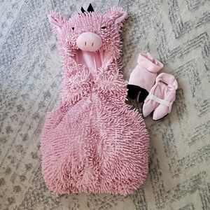 12 Month Pig Costume
